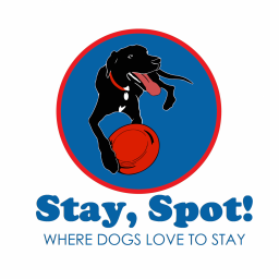 Stay, Spot! Doggy Daycare and Boarding