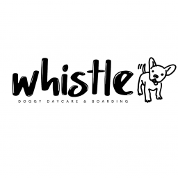 Whistle Doggy Daycare