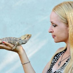 15-popular-exotic-pets-you-can-own-pets-life-blog