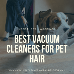 best-vacuum-cleaners-for-pet-hair-keep-the-tail-wagging