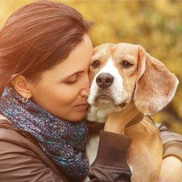 can-dogs-get-coronavirus-american-kennel-club