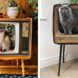 people-are-transforming-vintage-tvs-into-cozy-cat-beds-for-their-feline-friends