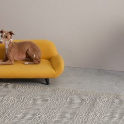 made-launch-uber-stylish-mini-sofa-and-bed-range-for-pets