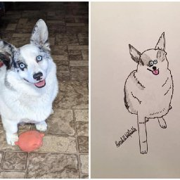 these-rubbish-pet-portraits-raised-nearly-6500-to-help-the-homeless