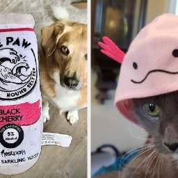29-things-to-add-to-your-pets-stocking-this-year