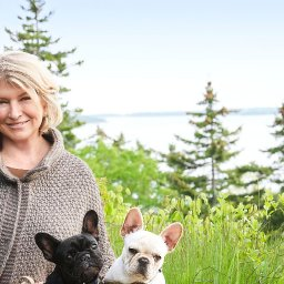 martha-shares-her-simple-genius-trick-for-pet-proofing-your-home