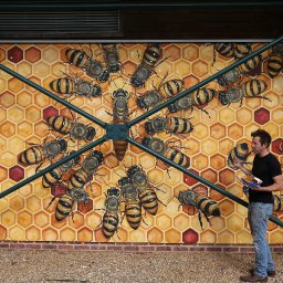 good-of-the-hive-the-new-york-muralist-on-a-mission-to-hand-paint-50000-bees