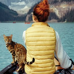 have-cat-will-travel-these-adventurecats-love-to-surf-swim-hike-and-camp