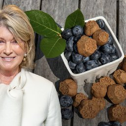 martha-stewart-says-cbd-for-pets-will-be-a-10b-industry-in-2-years