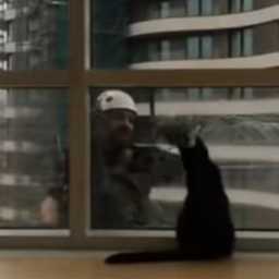 adorable-cat-strikes-up-a-friendship-with-the-buildings-window-cleaner